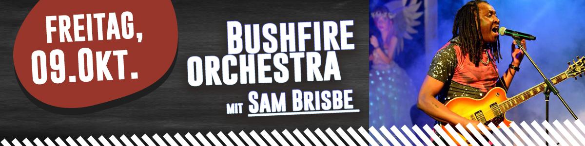 bushfire orchestra